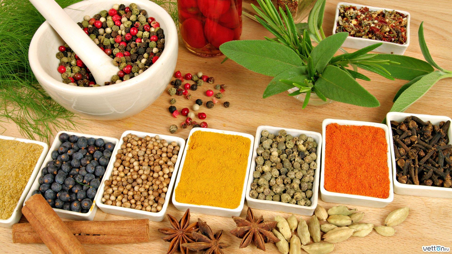 alternative medicine practice